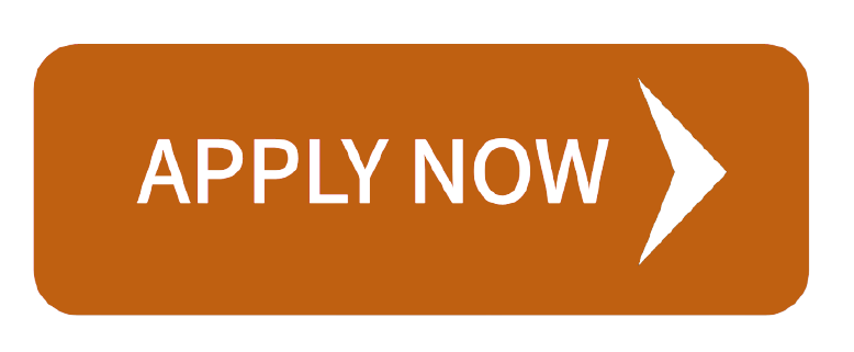 48 480043 apply now button hd png download removebg preview